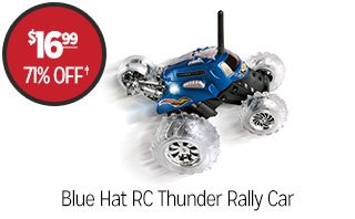 Blue Hat RC Thunder Rally Car - $16.99 - 71% off‡