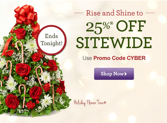 Cyber Monday Exclusive: Save 25%* Sitewide!  Use Promo Code CYBER.  Shop Now