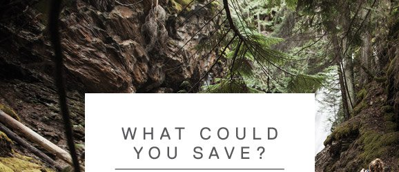 WHAT COULD YOU SAVE?