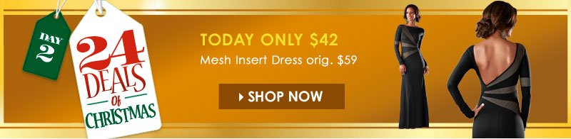 24 Deals of Christmas! Today Only, Gorgeous Mesh Insert Dress - regularly $59, Today Only $42! SHOP NOW!