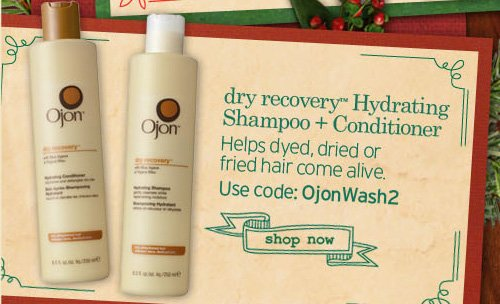 dry  recovery Hydrating Shampoo and Conditioner Helps dyed dried or fried  hair come to alive Use code OjonWash2 SHOP NOW