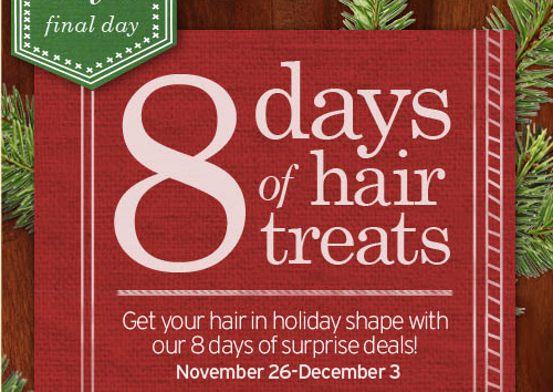 8  days of hair treats Get your hair in holiday shape with our 8 days of  surprise deals November 26 to December 3