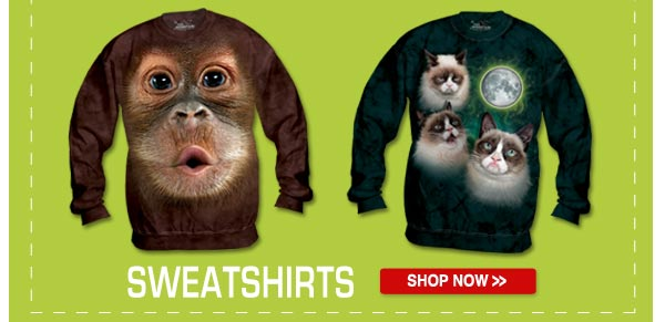 SWEATSHIRTS: Shop now