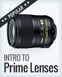 Prime Lens 101