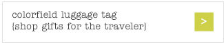 colorfield luggage tag