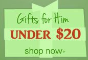 Shop gifts for him under $20
