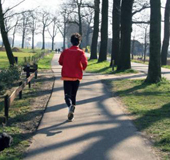 Park Runner_NL