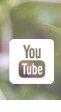 Tata Harper Youtube