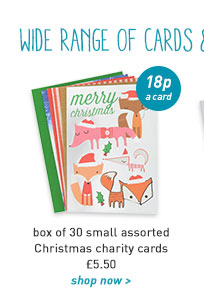 small christmas charity cards - box of 30