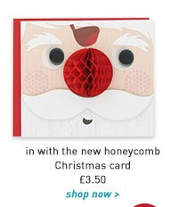 in with the new honeycomb christmas card