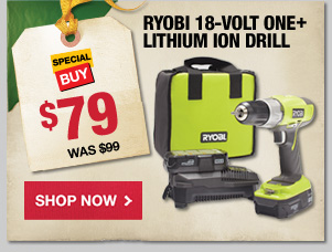 Ryboi 18 Volt One+ Drill