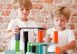Tegu: Magnetic Wooden Block Sets