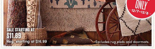 2 Days Only (12/7-12/8) - Save 30% All Rugs