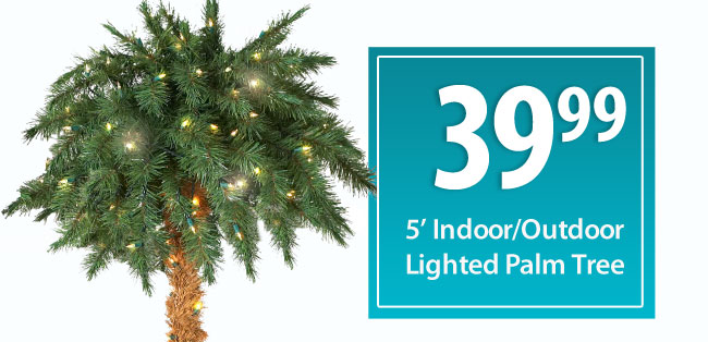39.99 5 foot indoor/outdoor Lighted Palm Tree