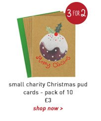 small charity christmas pud cards -pack of 10
