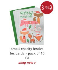 small charity festive fox cards - pack of 10