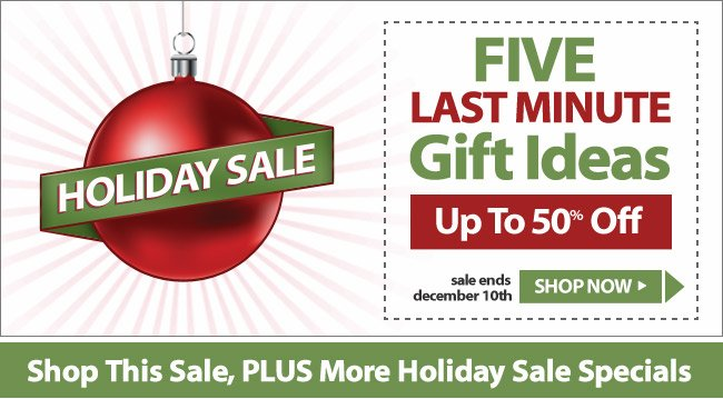 Holiday Sale - 5 Last Minute Gift Ideas - Up To 50% Off!