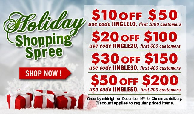 It's A Holiday Shipping Spree! Get Up to 25% Off!!
