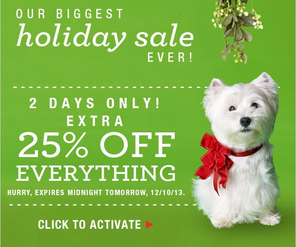 Extra 25% off everything: Biggest Holiday Sale Ever