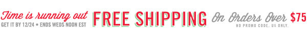 Free Shipping Leader