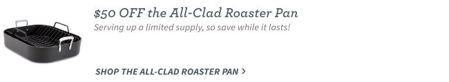 All Clad Roaster