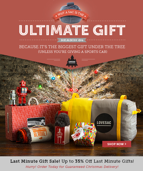 Last Minute Gift Sale! Up to 35% Off Last Minute Gifts!