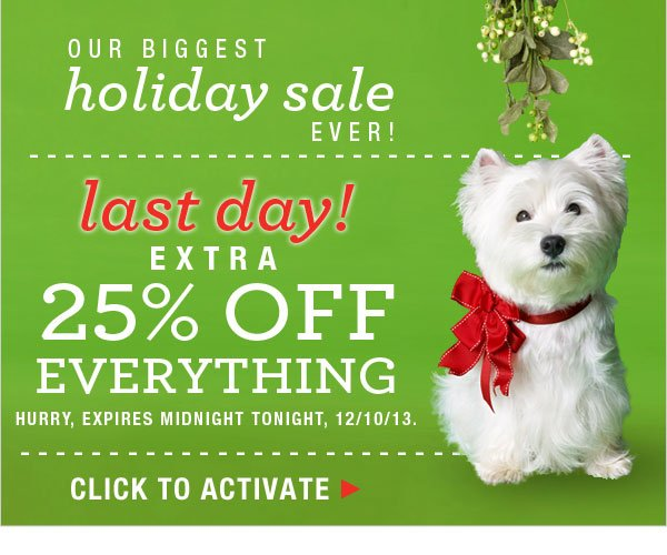 Last Day Biggest Holiday Sale Ever: 25% off everything