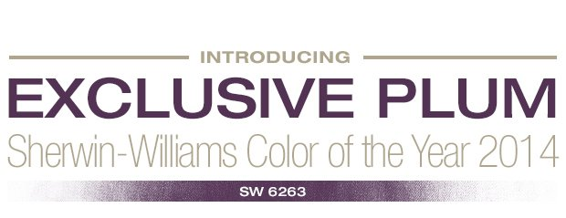 Meet the Color of the Year! Learn More About Exclusive Plum