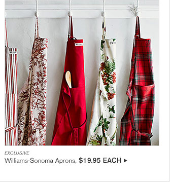 EXCLUSIVE - Williams-Sonoma Aprons, $19.95 EACH