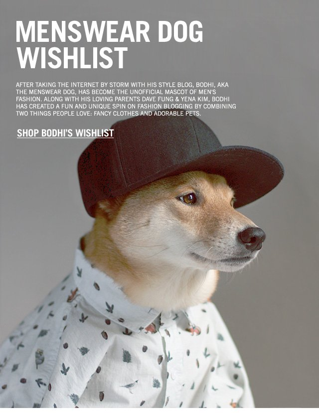 Menswear Dog Wishlist