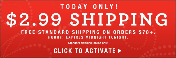 TODAY ONLY: $2.99 Standard Shipping Offer