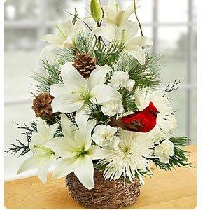 Wintertime Bird's Nest of Flowers Shop Now