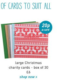 large christmas charity cards - box of 30