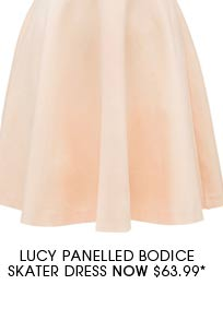 Lucy Panelled Bodice Skater Dress.
