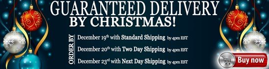 It's Not Too Late - Guaranteed Delivered FREE by December 25th!