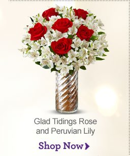 Glad Tidings Rose and Peruvian Lily Shop Now