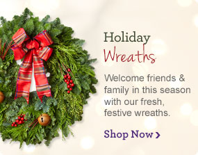 Holiday Wreaths Welcome friends & family in this season with our fresh & festive wreaths.