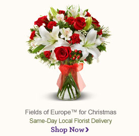 Fields of Europe™ for Christmas Shop Now