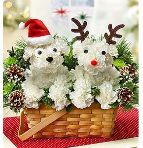 Santa Paws and His Best Reindeer™ Shop Now