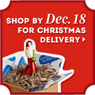 Shop by Dec. 18 for Christmas delivery