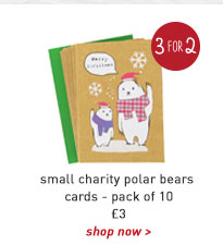 small charity polar bears cards - pack of 10