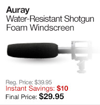 Auray Windscreen