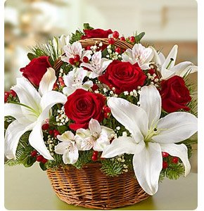 Fields of Europe™ for Christmas Basket Shop Now