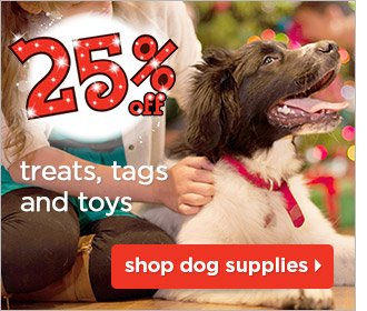 25% treats, tags, and toys - Shop dog supplies