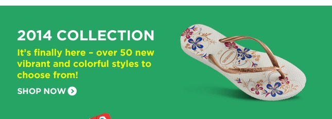 2014 COLLECTION - It's finally here - over 50 new vibrant and colorful styles to choose from! SHOP NOW