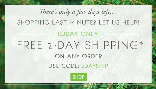 Today Only, Free 2-Day Shipping on Any Order!* Code: 2DAY SHIP