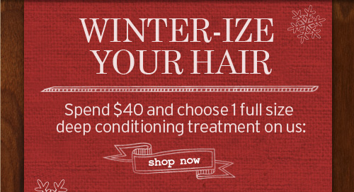 WINTER IZE YOUR HAIR Spend 40 dollrs and choose 1 full size deep conditioning treatment on us SHOP NOW