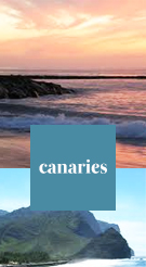 Whisk Me Away | Canaries