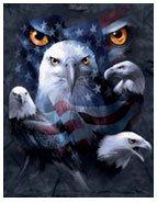 Patriotic Moon Eyes Eagle T-Shirt