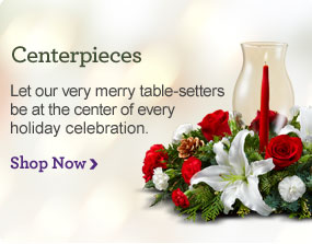 Centerpieces Let our very merry table-setters be at the center of every holiday celebration. Shop Now
